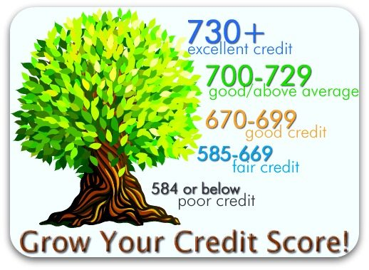 USDA Home Loan Credit Qualifications in NC