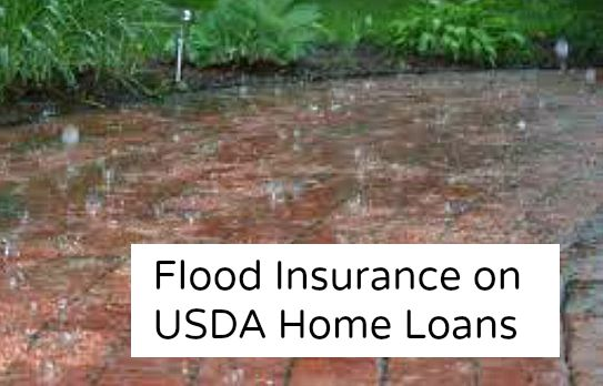Flood Plain Properties and USDA Home Loans